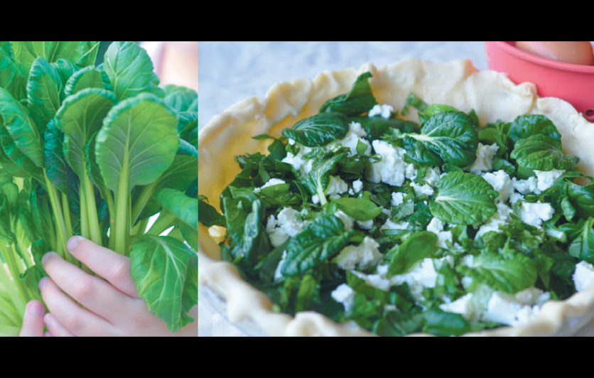 Cooking with Home Grown Greens