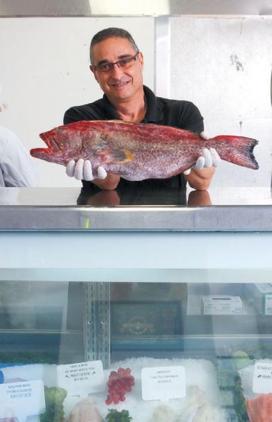 Sarasota Seafood Company