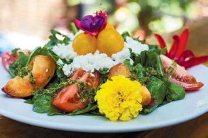 Georgia peach & tomato salad.