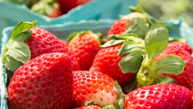 Strawberries at Boca Grande Farmers Market